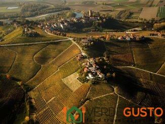 Paesaggio vitivivinicolo del Piemonte