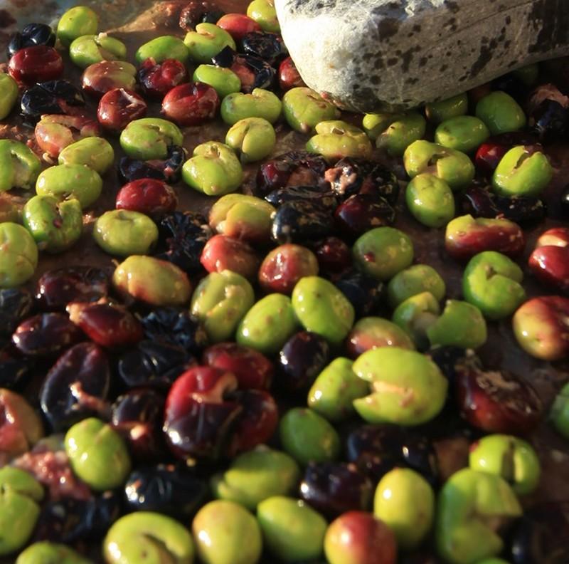 olive salella ammaccate