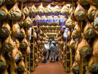 visita prosciuttificio Parma
